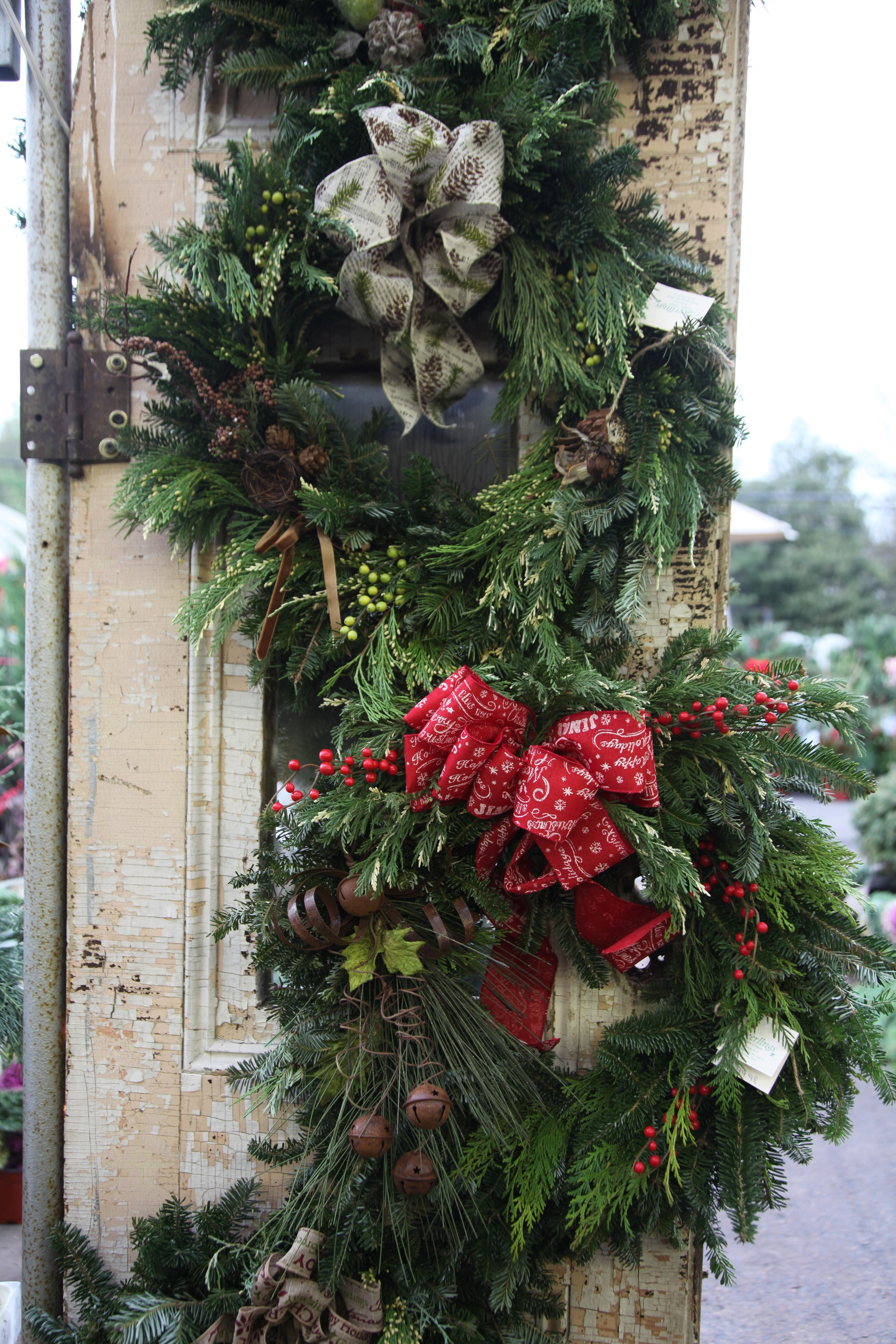 Live Christmas Wreaths Wholesale